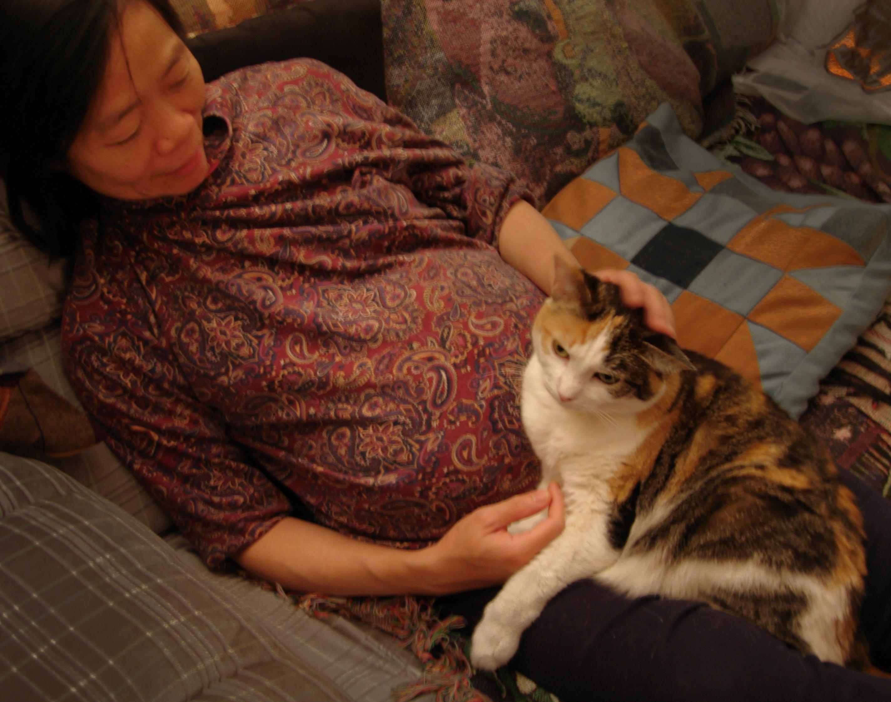 Chow Nutmeg, pregnant